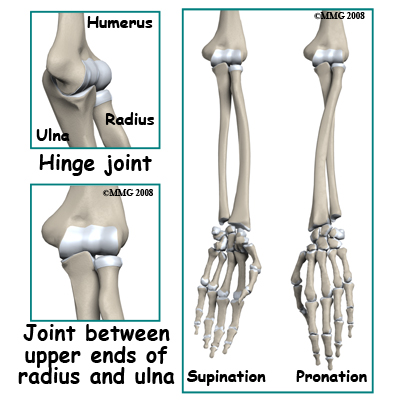 Physical Therapy In Perrysburg For Elbow Fractures