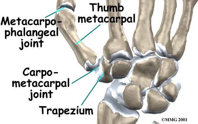 Physical Therapy in Perrysburg for Hand Conditions