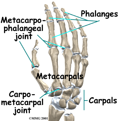 Physical Therapy In Perrysburg For Hand Surgery