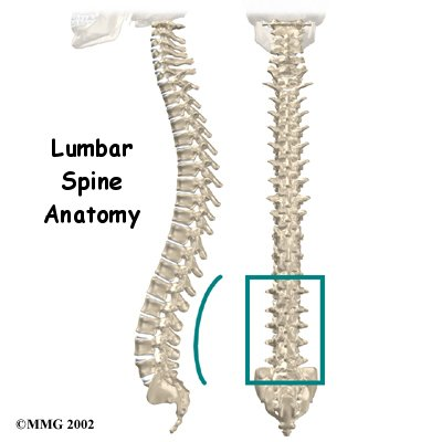 Physical Therapy in Perrysburg for Lower Back